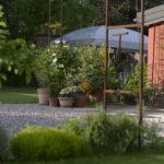 giardinostucky4